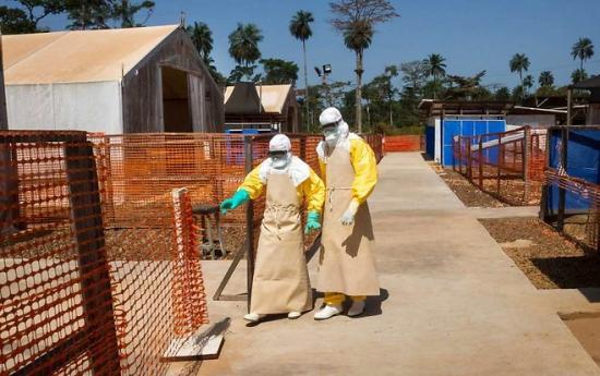 1188103 lepidemie debola officiellement terminee en guinee web tete 021585209018 660x414p