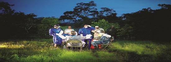 Lequipe projet reservoir effectue prelevements biologiques chauves souris proximite ville mamou guinee 0 728 484