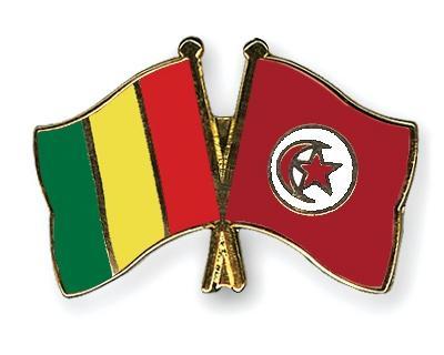 Pins guinee tunisie