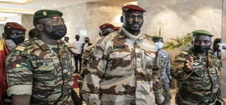 La Guinée interdit la coupe et le transport du bois